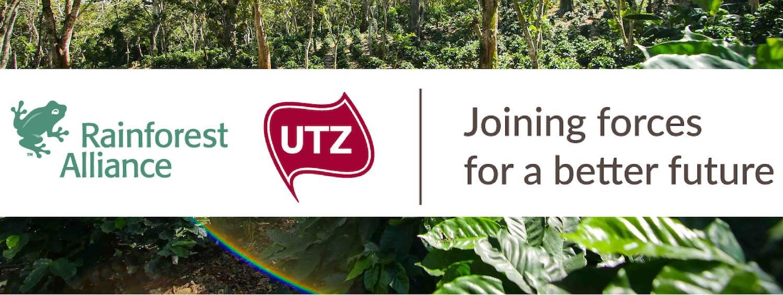 Alliance Rain Forest / UTZ