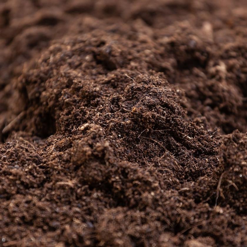 marc de café à la terre du potager