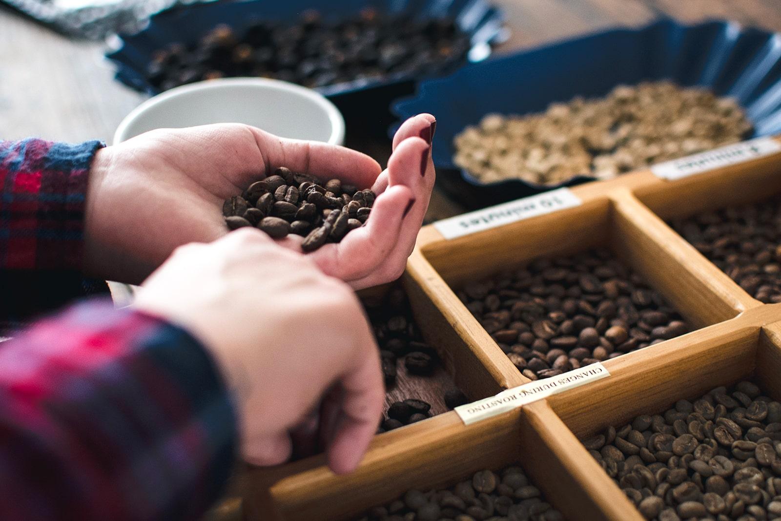 Choisir les meilleurs grains pour un café Premium