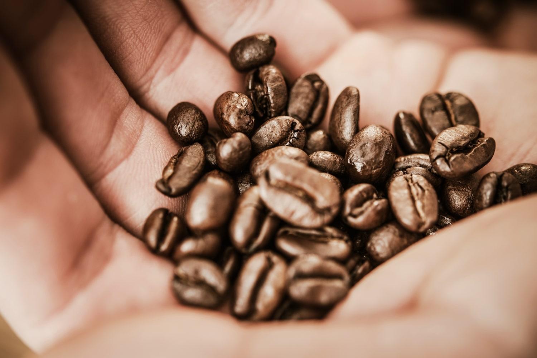 Graines de café dans une main