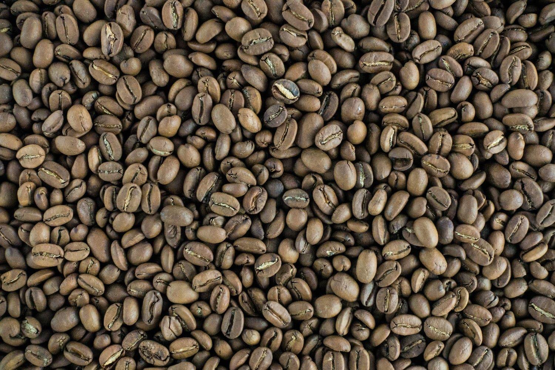 Graines de café torréfier